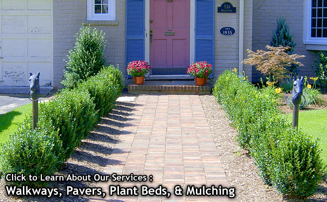 AJ Landscape Design Services