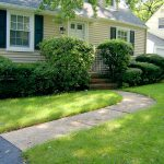 Front Yard – BEFORE