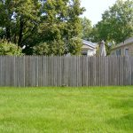 Backyard / Fence – BEFORE