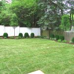 Backyard – AFTER