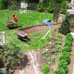 Backyard – BEFORE