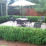 Backyard – AFTER